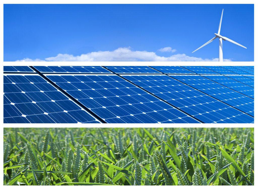 Carbon Offsetting Program |JRP Fuel