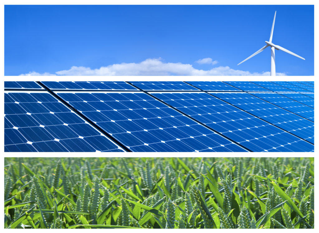 Carbon Neutral Programs